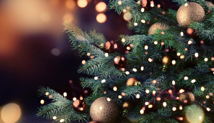 """Sospensione ricevimento pubblico """"in presenza"""" durante le festività natalizie."""
